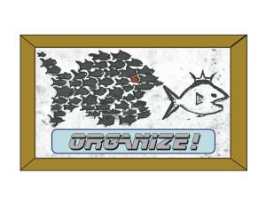 organize -